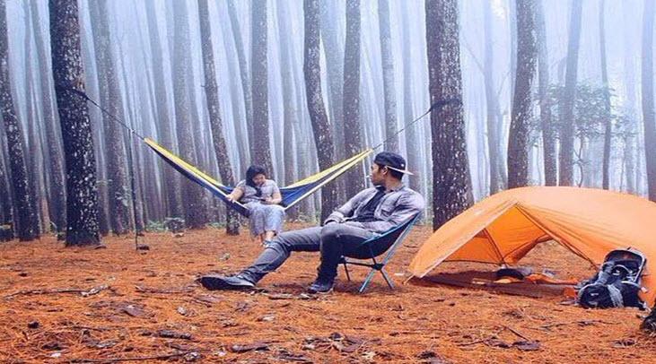 Hutan Pinus Mangunan di jogja