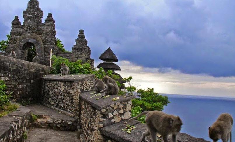Monyet Pura Uluwatu