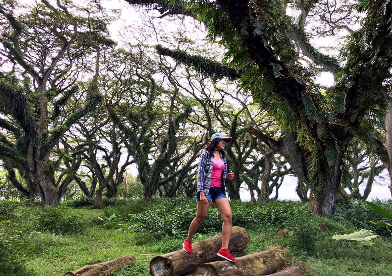Berkunjung Ke Raja Ampat Dan The Lord Of The Rings Nya Jawa